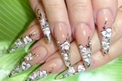Рисунок 1. Прозрачные ногти с китайской росписью