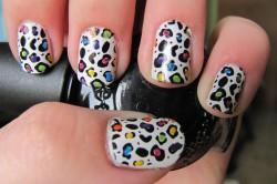 Цветной леопардовый маникюр