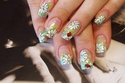 Вариант дизайна ногтей с ромашками