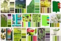 цветовые сочетания с зеленым
