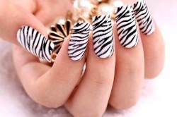 Рисунки на ногтях в стиле «зебра»