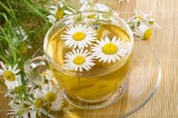 Польза травяного чая ромашки при больном горле