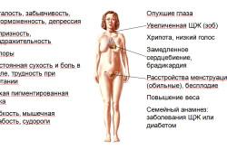 Понженный уровень ТГ при гипотиреозе