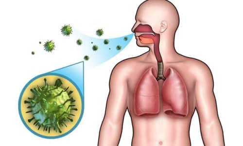 Заражение вирусом герпеса у человека происходит воздушно-капельным, контактным путями