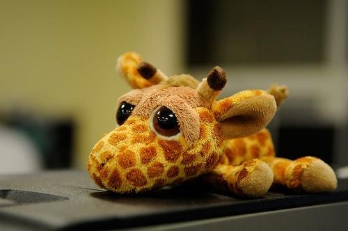 грустный жираф