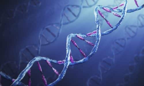 Существует генетическая предрасположенность к развитию аденомы, т. к. формирование опухоли на железе вызвано мутацией гена