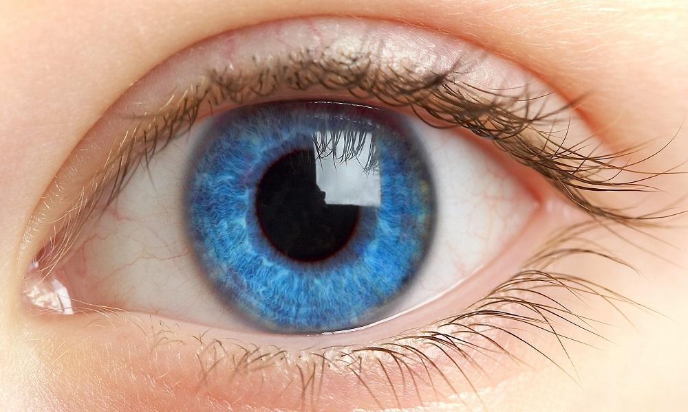 Если инфекция попадет в глаз, то появляется офтальмогерпес, такая патология провоцирует частичную или полную потерю зрения