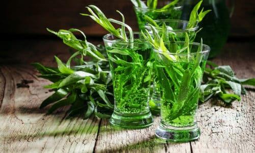 Представленное растение способно, при умеренном и корректном потреблении, увеличить степень работоспособности человека