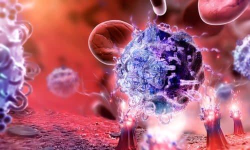 Вирус иммунодефицита атакует Т-лимфоциты, разрушает иммунную систему человека и делает его организм уязвимым для герпесной инфекции