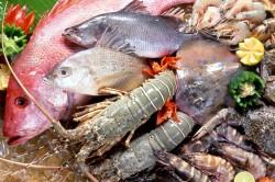 Морепродукты богатые таурином