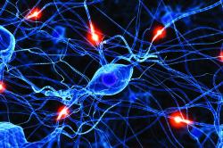 Запор из-за заболевания нервной системы