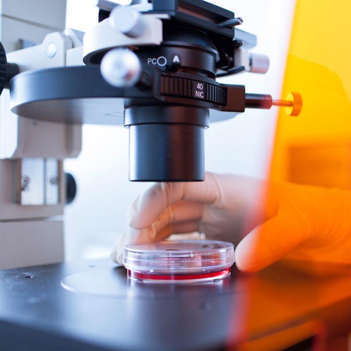 микроскоп и анализ