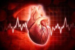 Сердечные заболевания - причина повышенной СОЭ