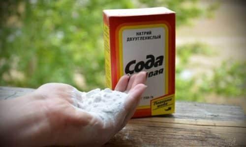 Сода хорошо себя зарекомендовала в борьбе с вирусом герпеса