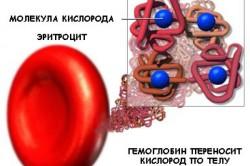Связывание эритроцитов с гемоглобином