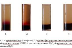 Визуальная оценка состояния проницаемости эритроцитов